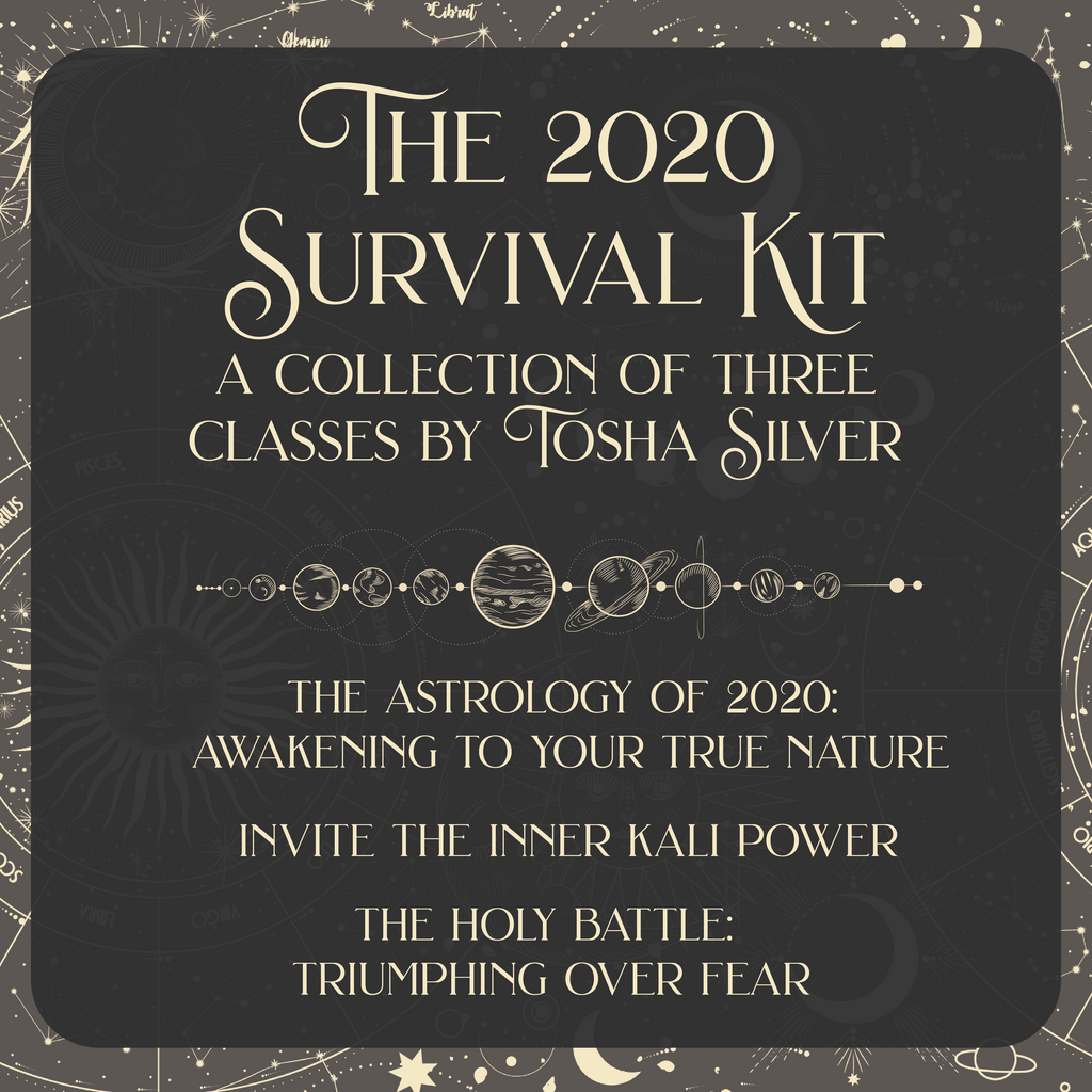 2020 Survival Kit (20% off full price of $217)