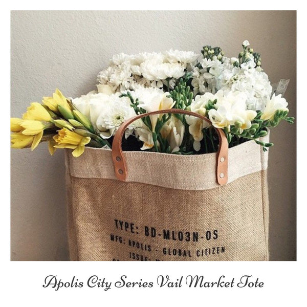 Apolis Vail Colorado City Series Market Bag