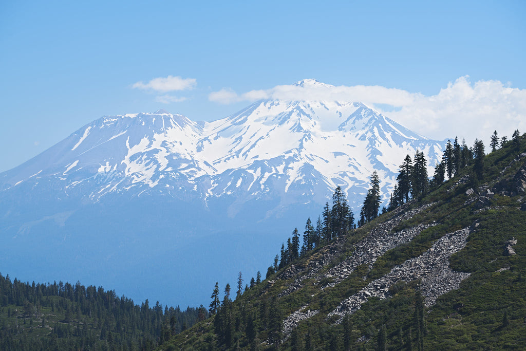 VII. Mt. Shasta and Central Oregon