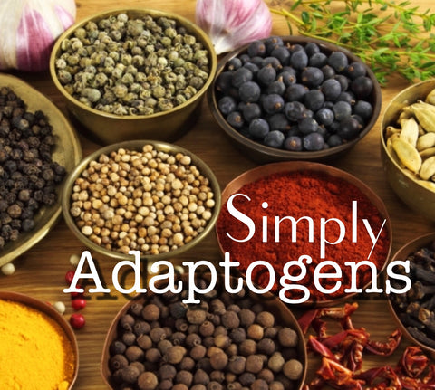 healing herbs and spices adaptogens fight stress depression anxiety bringing body to homeostasis and ultimately fighting disease in the body