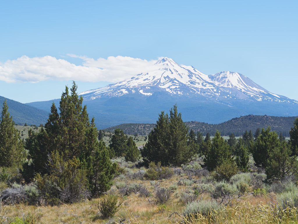 mt-shasta-northeast-view