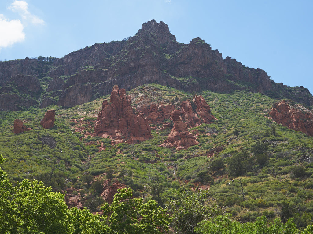 red-rocks-green-lush-blue-sky-sedona