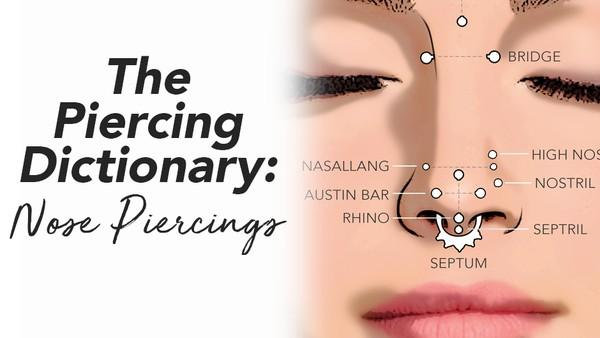 The Piercing Dictionary  Nose Piercings     BodyCandy