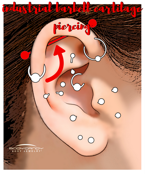 Encyclopedia of Body Piercings: Industrial Barbell Cartilage Piercing