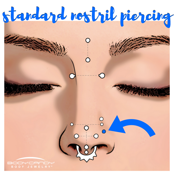 Encyclopedia of Body Piercings: Standard Nostril Nose Piercing