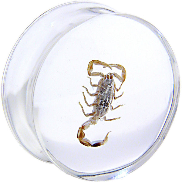 22mm Organic Scorpion Resin Saddle Plug