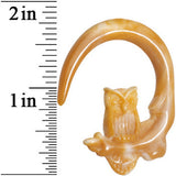 2 Gauge White Gold Acrylic Insightful Owl Curved Taper Plug