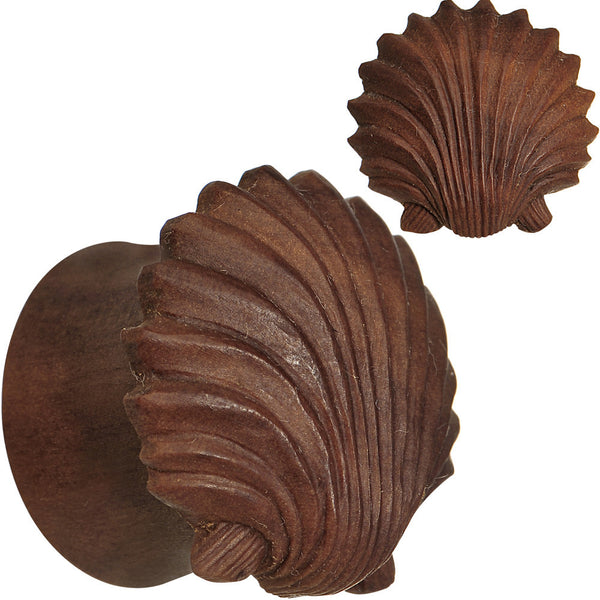 5/8 Organic Sabo Wood Ariel's Shell Hand Carved Plug Set