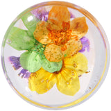 "9/16"" Clear Acrylic Purple Multi Dried Spring Flowers Saddle Plug"