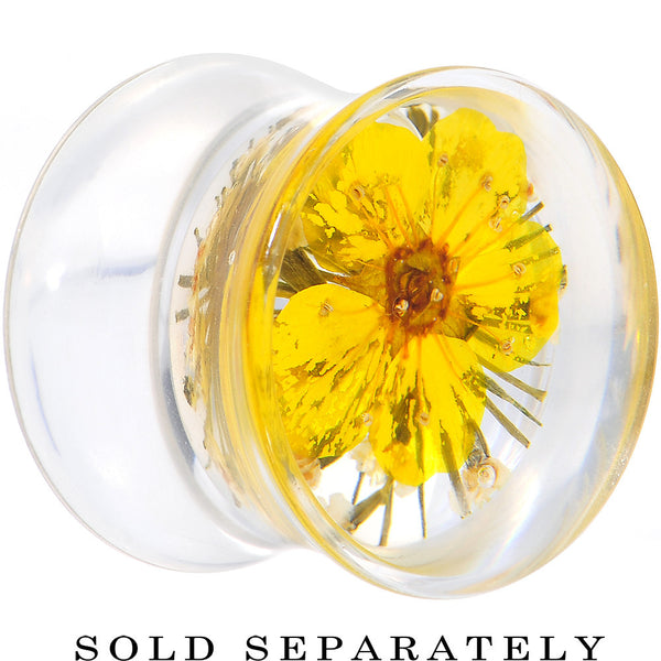 1/2 Clear Acrylic Yellow Multi Dried Spring Flowers Saddle Plug