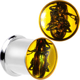 "7/16"" Stainless Steel Amber Resin Real Beetle Inlay Plug Set"