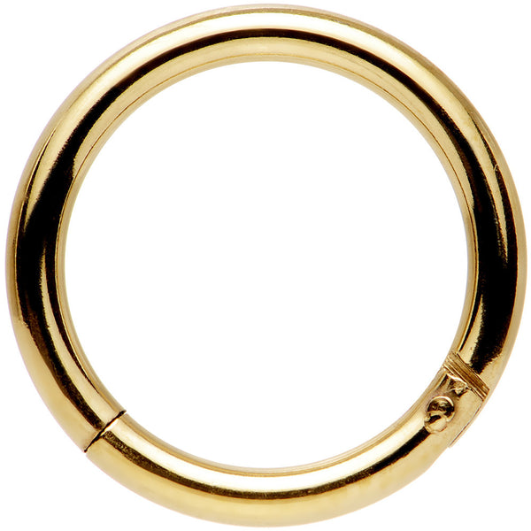 14 Gauge 3/8 Gold Tone Anodized Hinged Segment Ring
