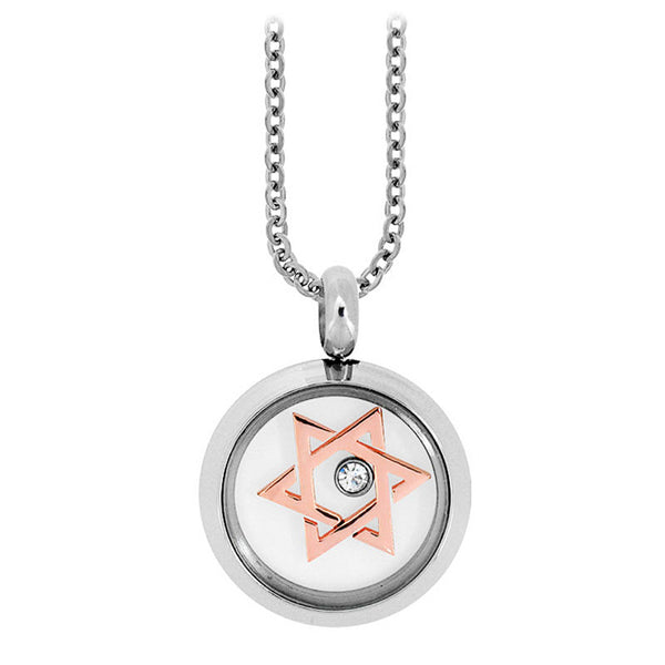 Inox Jewelry  Stainless Steel Star of David CZ Necklace