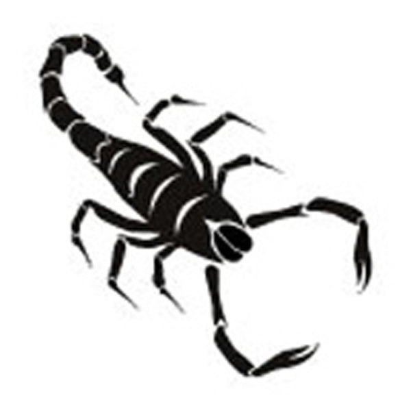 SCORPION Temporary Tattoo 2x2