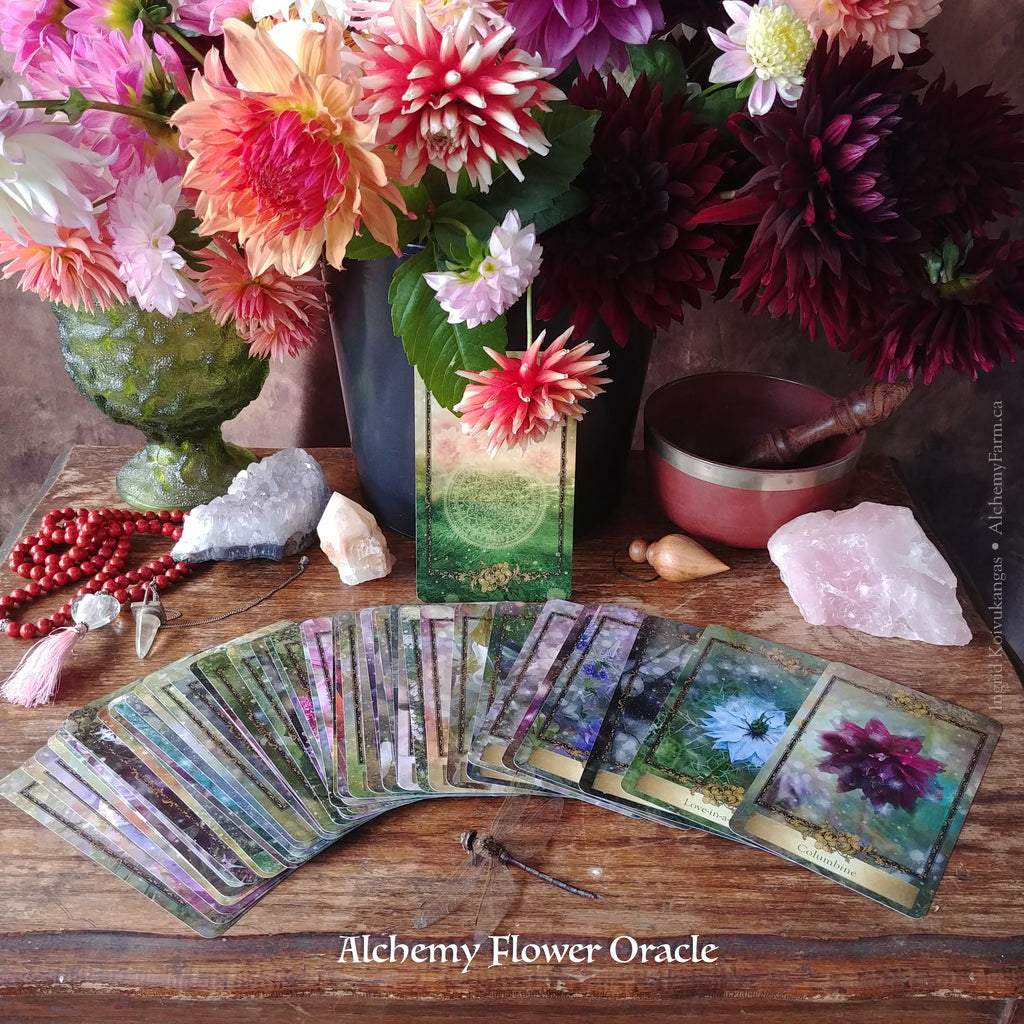 The Alchemy Flower Oracle - Becoming a Flower Apprentice for the Earth