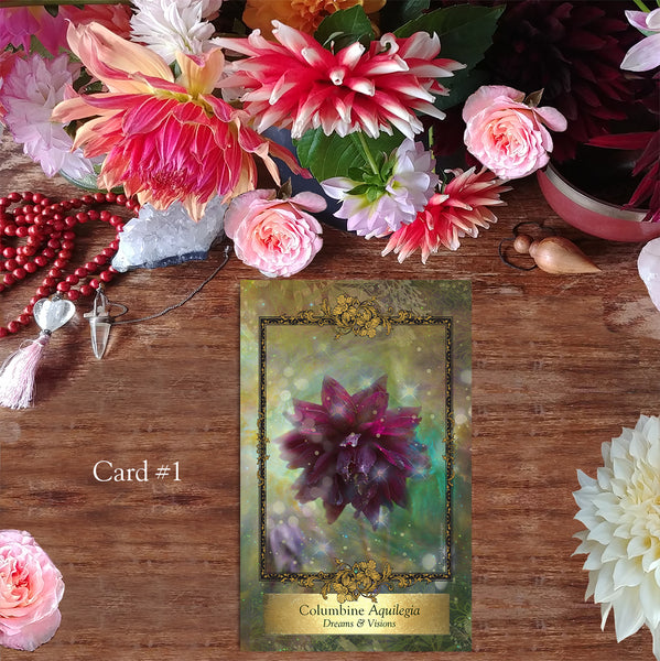 Alchemy Flower Oracle ~ Messages from Flowers