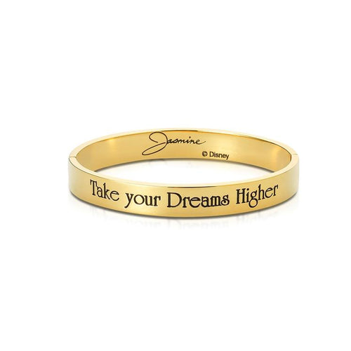 Disney-aladdin-jasmine-princess-bracelet-bangle