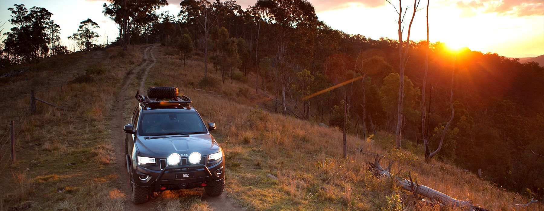 Jeep Road - Conglomerate State Forest // NSW // Australia