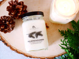 Virginia candle company soy candle hand poured christmas candle holiday