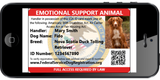 Digital Version Of Emotional Support Animal ID Card From Federal Service Dog Registration