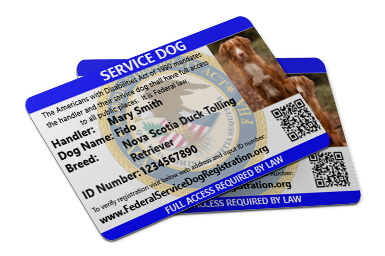 Buy 1 Get 2nd Free Offer Expires Soon Service Dog Id