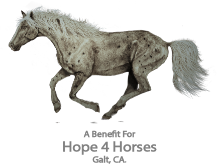 Running Horses A Benefit for Hope 4 Horses Ladies' Pullover Hoodie