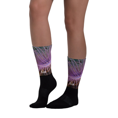 Purple Sea Anemone Socks