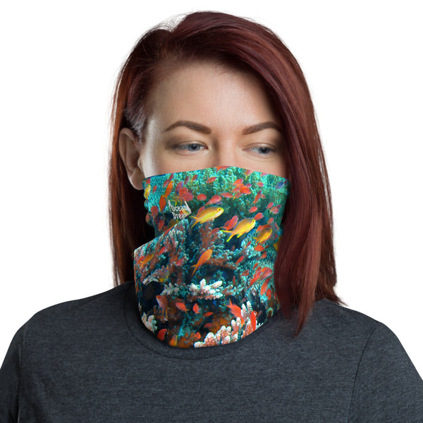 Anthias Reef Mask