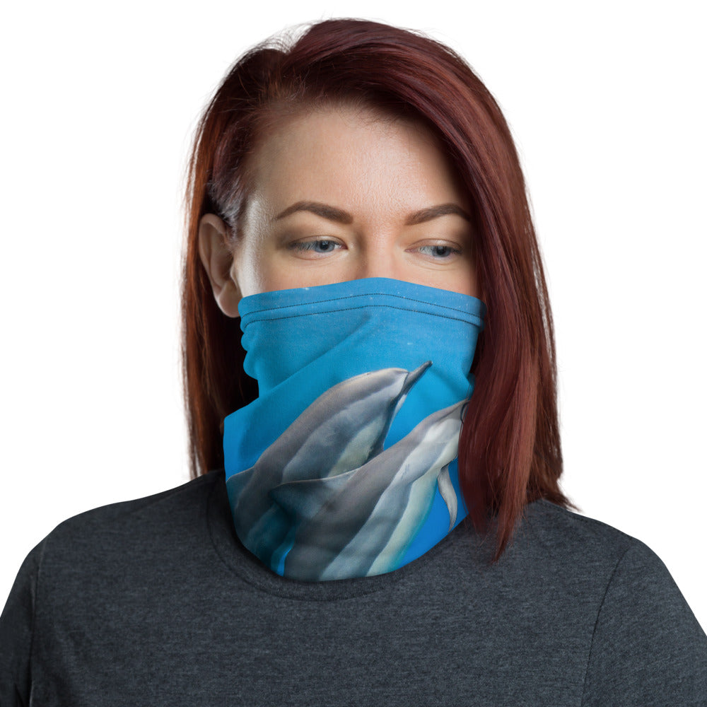 Spinner Dolphins Face Mask