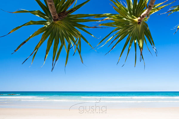 Photo of Pandanus Shade BB1139 - Gusha