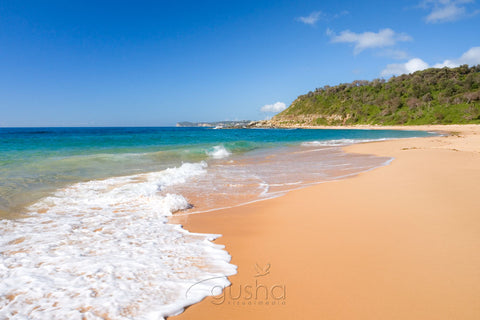 Photo of Forresters Beach CC0478 - Gusha