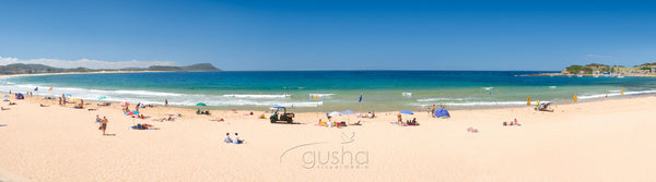 Photo of Terrigal Beach CC1164 - Gusha
