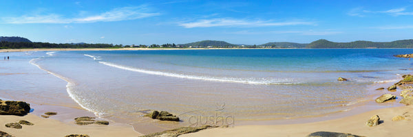 Photo of Umina Beach CC1202 - Gusha