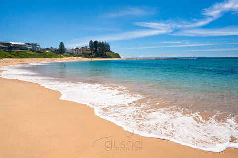 Photo of Blue Bay CC1238 - Gusha