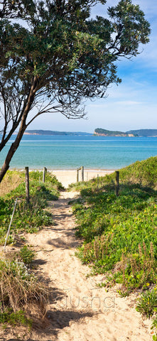 Photo of Ettalong Beach CC1256 - Gusha