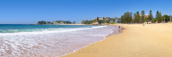 Photo of Terrigal Beach CC1257 - Gusha
