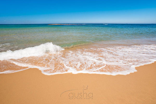 Photo of Forresters Beach CC1353 - Gusha