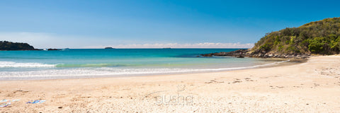 Photo of Diggers Beach COF2439 - Gusha