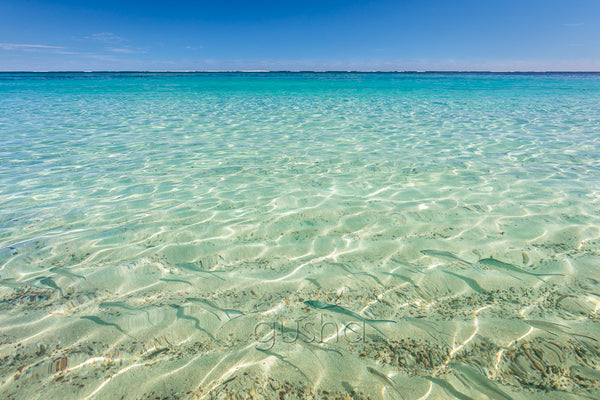 A school of small fish swim in crystal clear waters at Turquoise Bay, inside Ningaloo Reef, Australia.