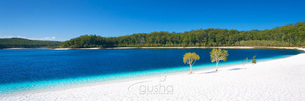 Photo of Lake McKenzie FI0366 - Gusha