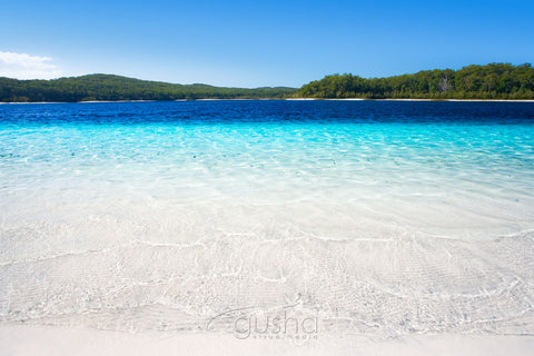 Photo of Lake McKenzie FI0367 - Gusha