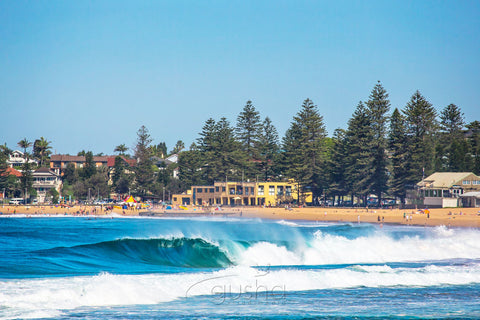 Photo of Collaroy Beach FL0011 - Gusha