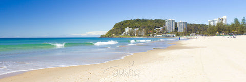 Photo of Burleigh Heads GC2582 - Gusha