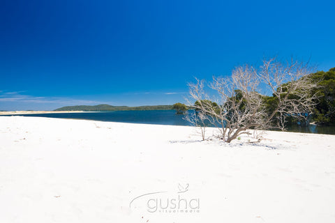 Photo of Corrie Island HN0748 - Gusha
