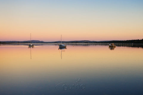 Photo of Myall Lakes HN0758 - Gusha