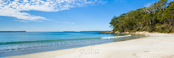 Photo of Blenheim Beach JB2021 - Gusha