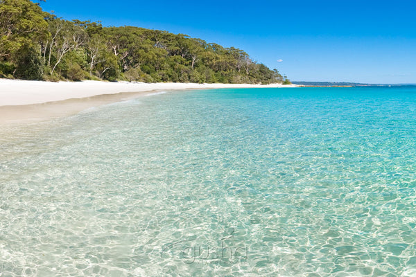 Photo of Murrays Beach JB2670 - Gusha