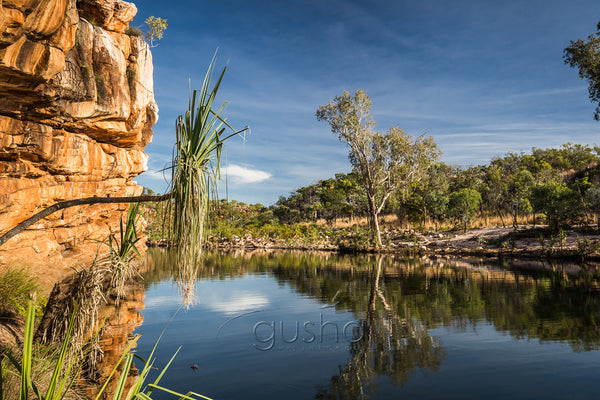 This crocodile free oasis near Manning Gorge camp ground is welcome relief from the outback heat. The campground offered unpowered sites and lucky to get a hot shower but this was my favourite campsite during our time exploring the Gibb River Road.