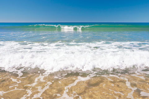 Photo of Maroochydore Beach MR1876 - Gusha