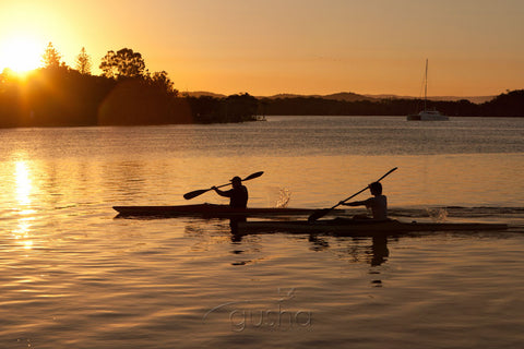 Photo of Kayaking Maroochy River MR2540 - Gusha